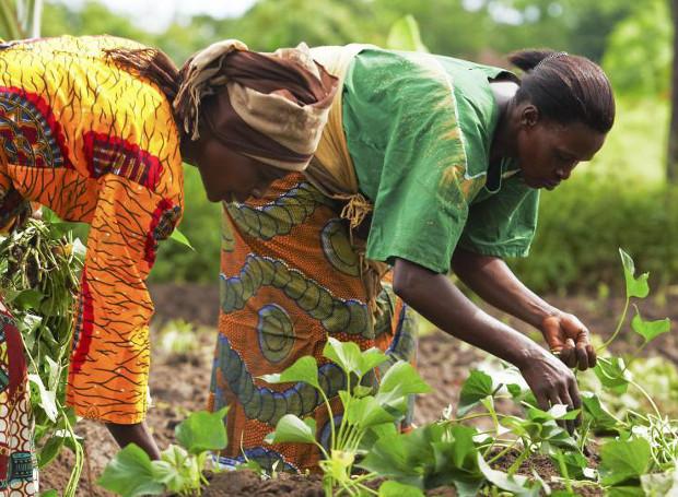 Διεθνής Ημέρας Αγρότισσα